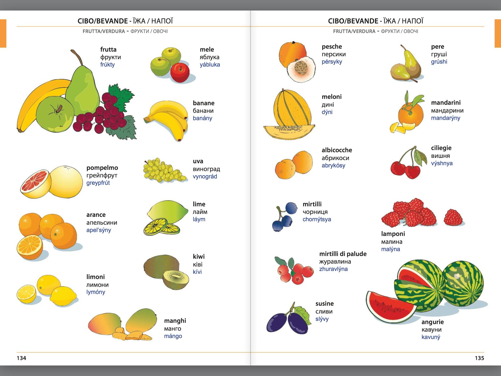 Manuale di conversazione illustrato Italiano-Ucraino